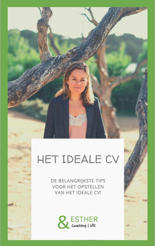 Het Ideale CV E-Book